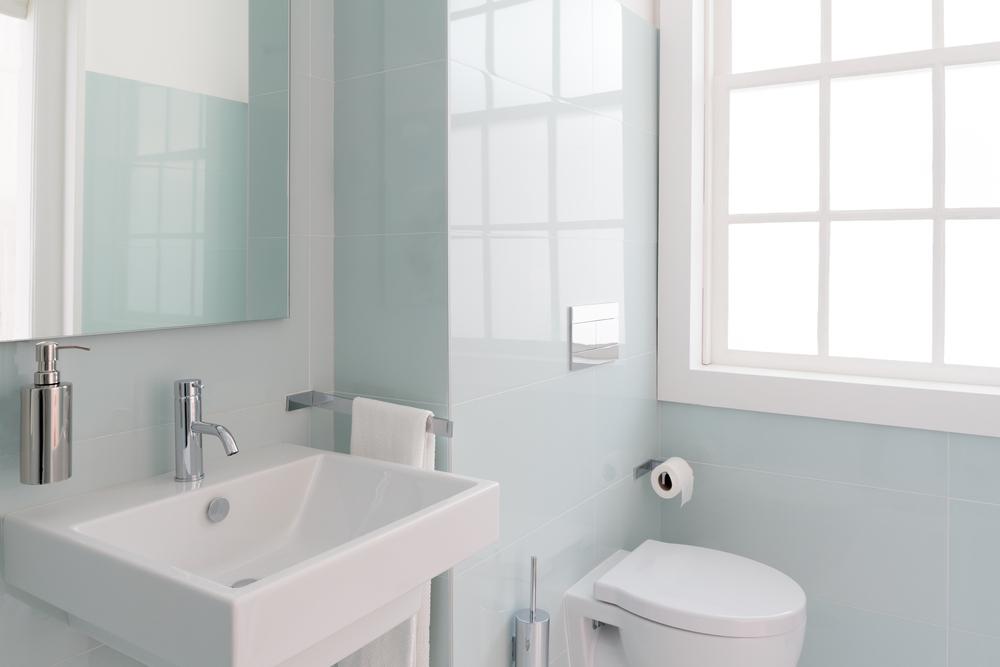 トイレの便座とトイレットペーパー